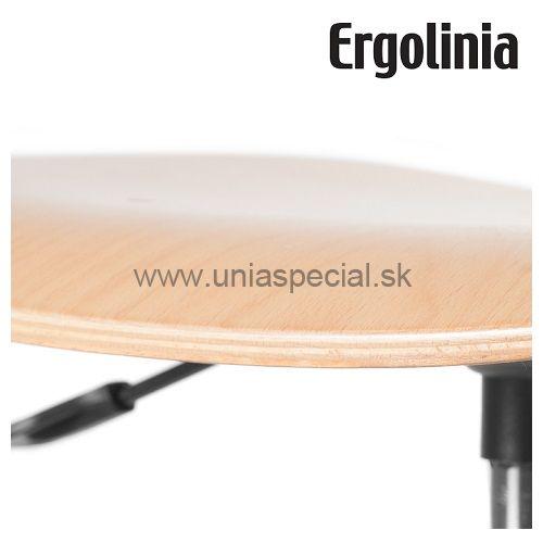 22dcab479245 Pracovná stolička Ergolinia 10004